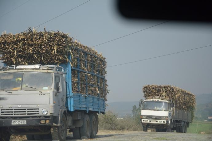 Gia Lai cho phép xe chở nông sản ra vào vùng dịch