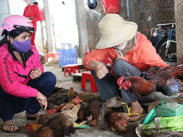 Cấm bán gà vịt sống và giết mổ gia cầm tại chợ, liệu có khả thi?