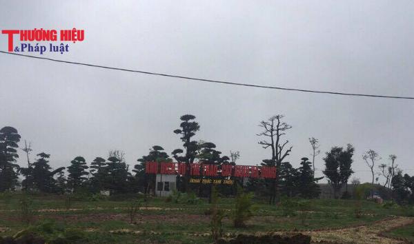 Dự án công viên cây xanh Hà Đông: Hàng loạt sai phạm đang tồn tại