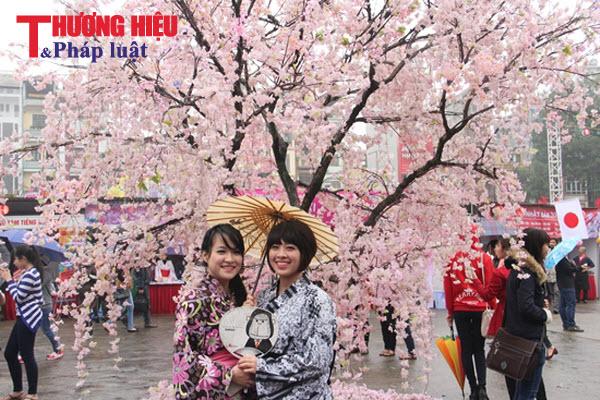Triển lãm 1 vạn cành hoa anh đào Nhật Bản tại Hà Nội