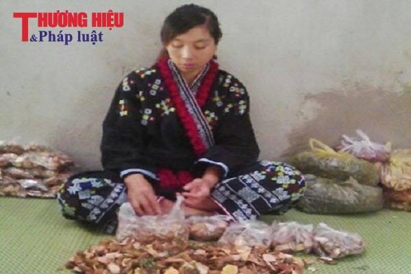 Kỳ diệu bài thuốc chữa bệnh vô sinh, hiếm muộn của người Dao