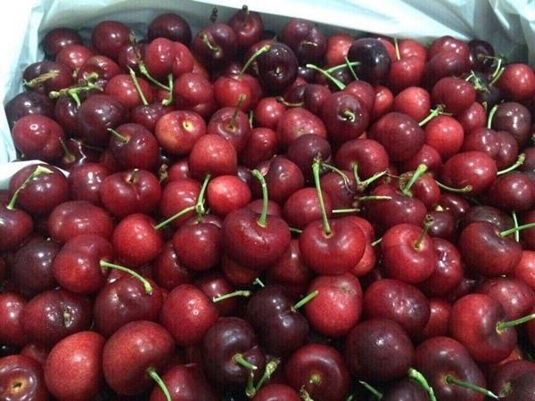 Tràn lan cherry Trung Quốc 90 nghìn/kg trên thị trường